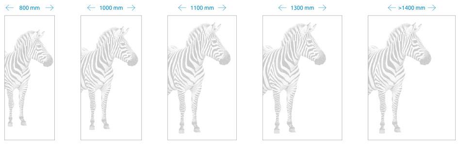 Zebra minta lézergravírozás